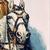 Buffalo Bill et la conquête de l'Ouest